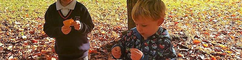 Why Children Should Walk To School During Autumn