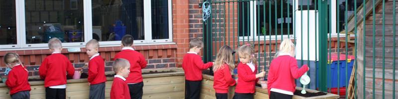 Make Your School Playground Pollinator Friendly