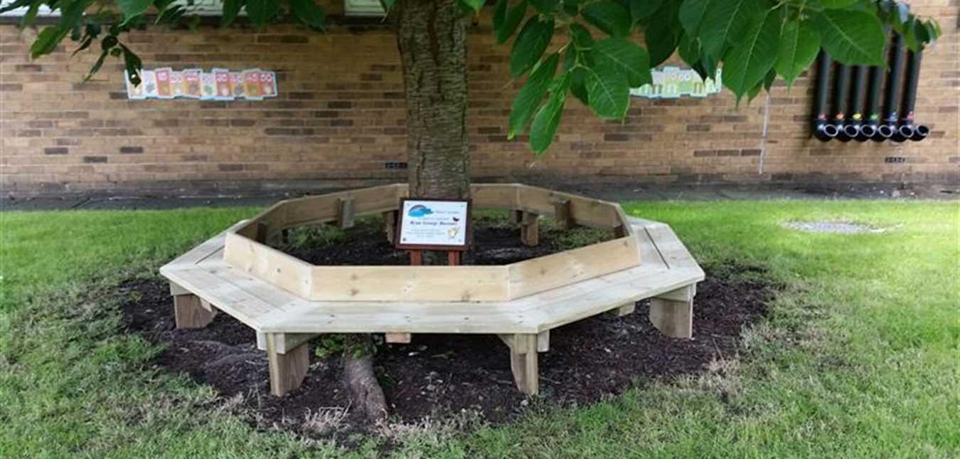 A Tree Seat in Loving Memory of Ryan George