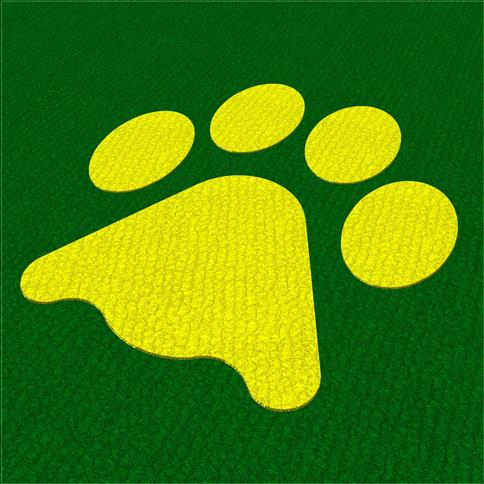 Saferturf Lion Paw