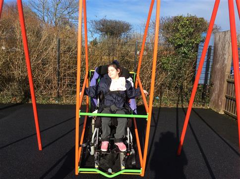 Inclusive Wheelchair Swing