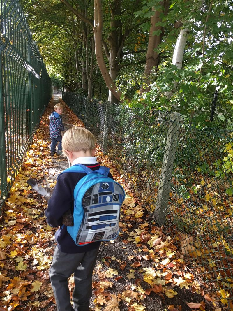 The importance of walking to school