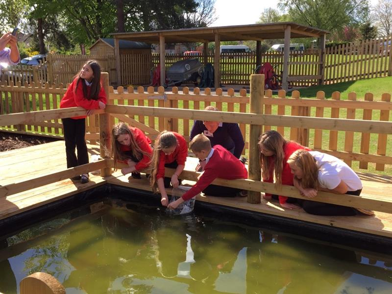 Wildlife Area for school playgrounds