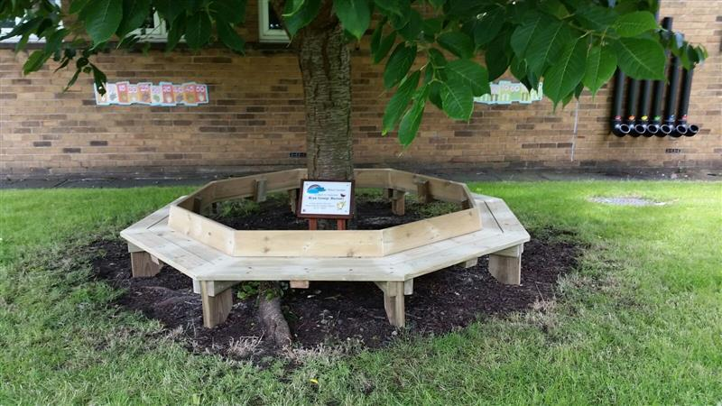 A Tree Seat in Memory of Ryan George