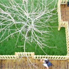 Smithdown Primary School's Playground Treehouse