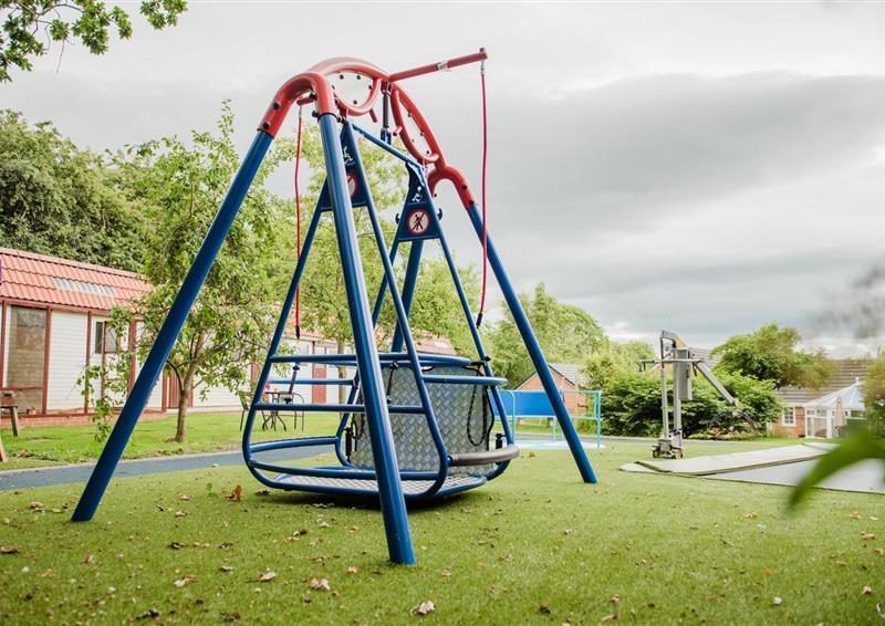 special needs swing